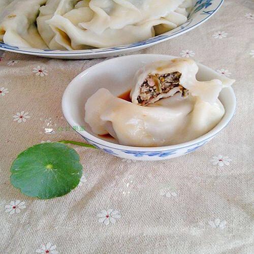 马齿苋菜干鲜肉水饺