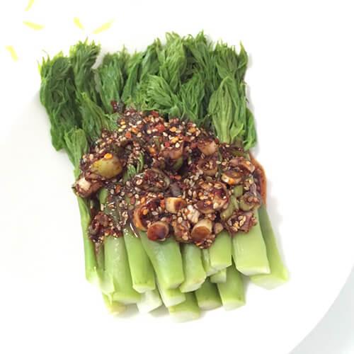 红油山野菜刺嫩芽