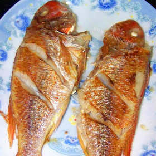 鲜煎原味金线鱼