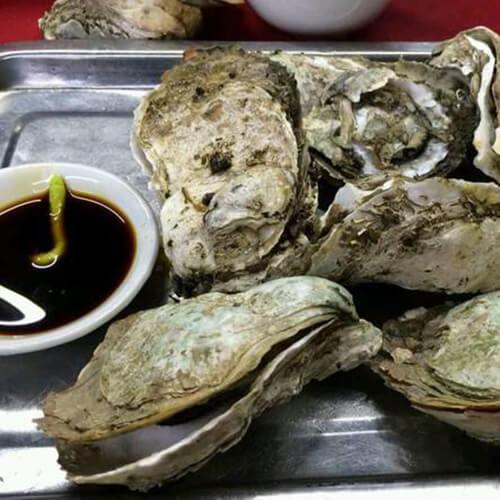 原味蒸牡蛎