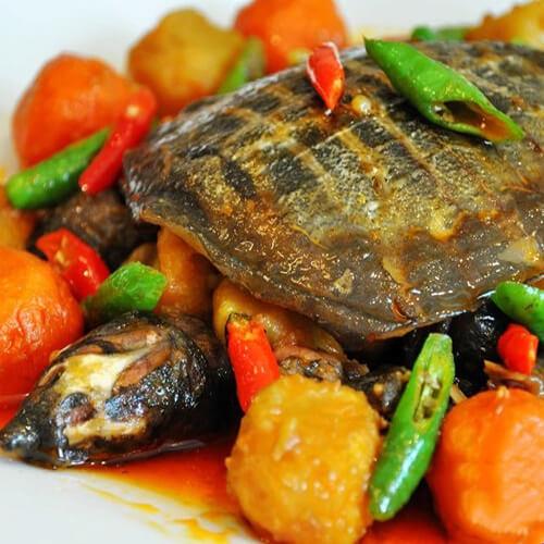 土豆炒甲鱼