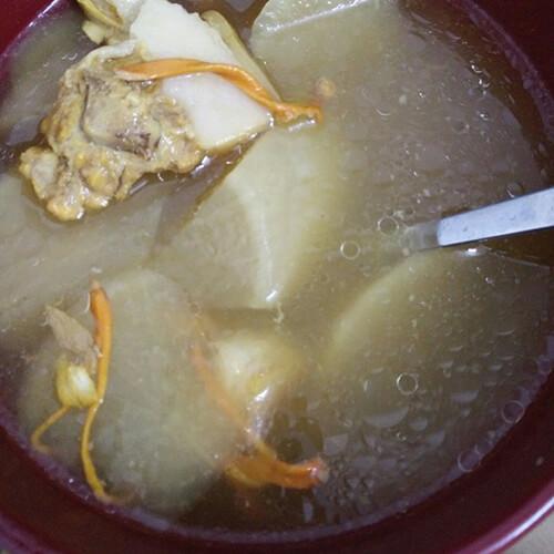 白萝卜猪尾汤
