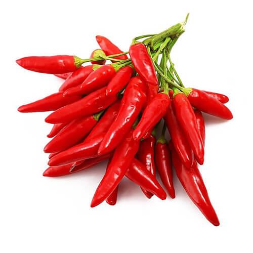 小红尖辣椒