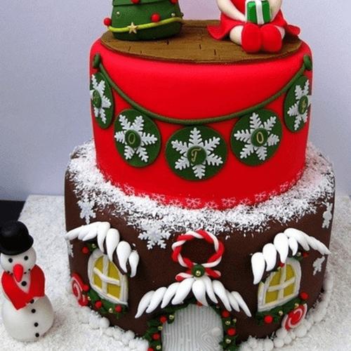 萌宠草莓圣诞老人