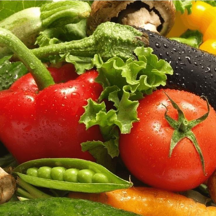 养肝护肝的食物