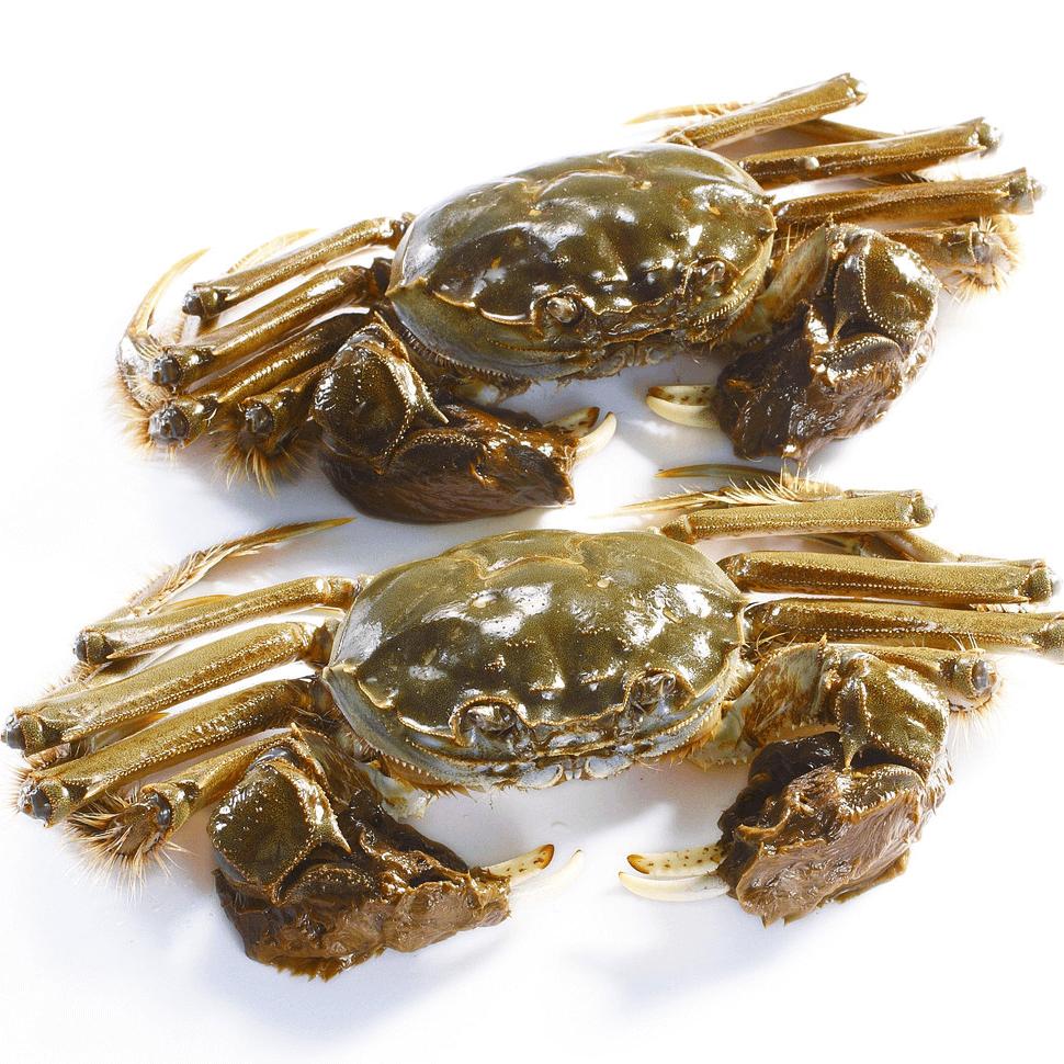 螃蟹不能和什么一起吃