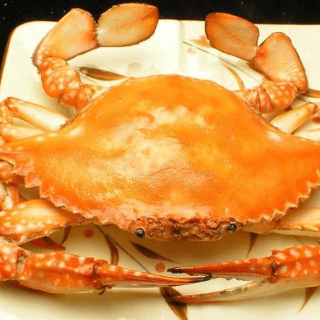 营养的清蒸梭子蟹