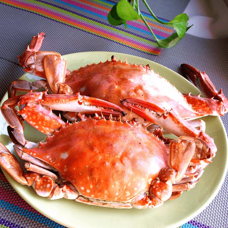 最爱的清蒸螃蟹