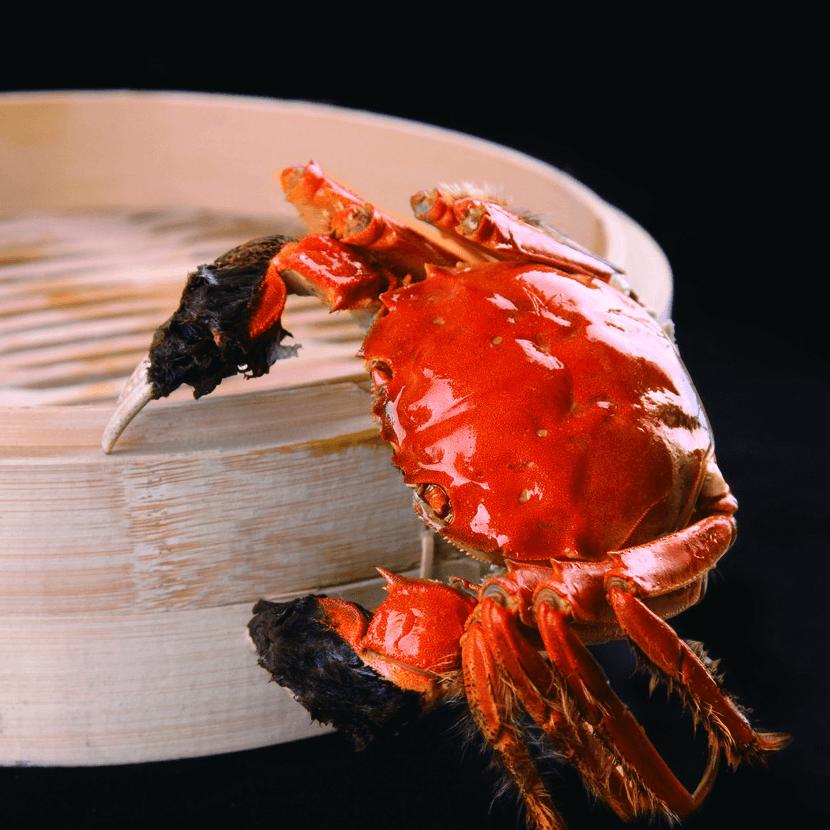 好吃的清蒸大闸蟹
