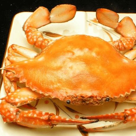 美味的清蒸梭子蟹