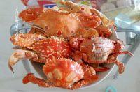 独特的清蒸螃蟹
