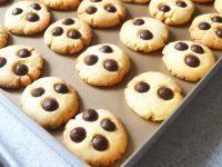 自制巧克力豆饼干