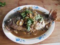 家常菜清炖鱼