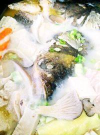 自制鱼头火锅