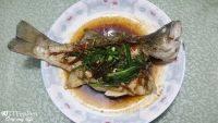美味的清蒸鲈鱼