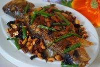 家常菜干烧鲈鱼