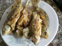 香脆的炸酥鱼