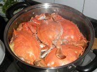 美味的清蒸海螃蟹