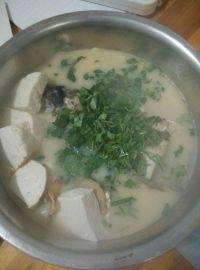 美味的鱼头豆腐汤