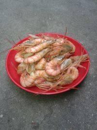 美味的炒虾