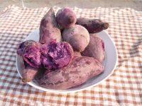 营养蒸紫薯
