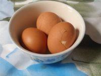简单易做的水煮蛋
