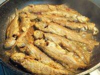 红烧小黄鱼(简单版)
