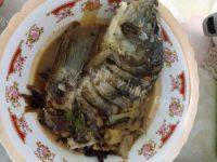 常吃不腻的清炖鲤鱼