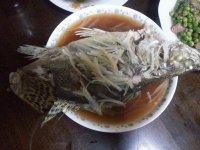 最爱的清蒸桂鱼