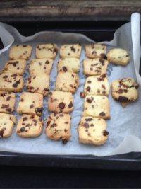 自制蔓越莓饼干