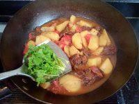 家常菜土豆炖牛腩