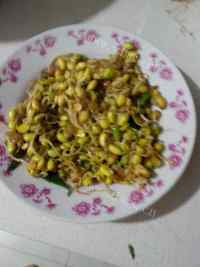 家常菜炒豆芽
