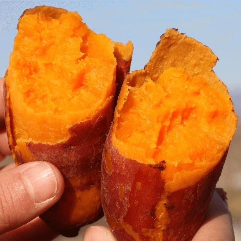 红薯不能和什么一起吃