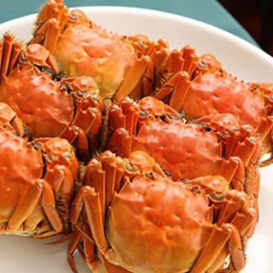 菊叶酒香螃蟹