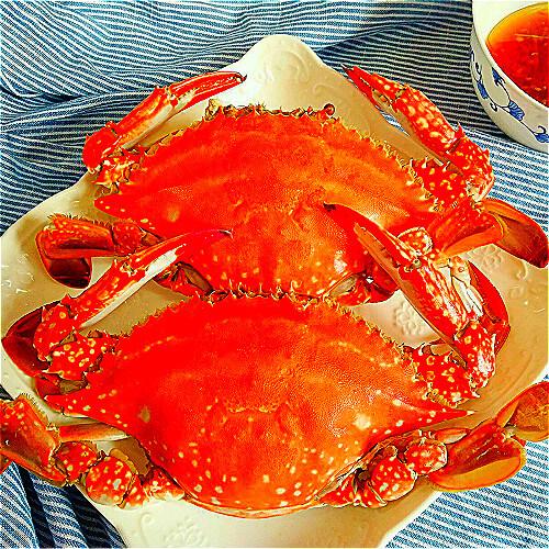 易做的清蒸梭子蟹