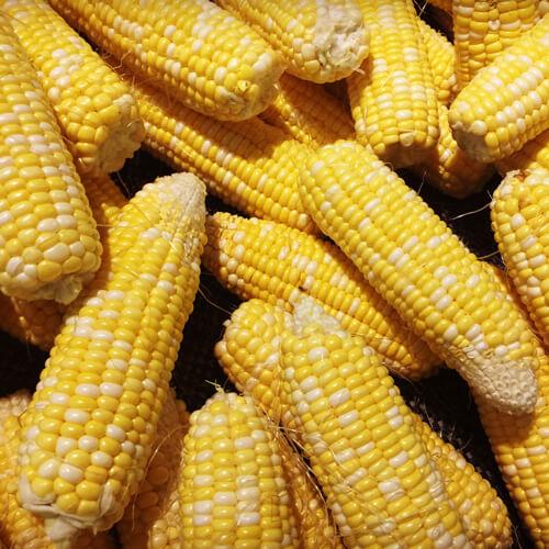 简单版水果玉米
