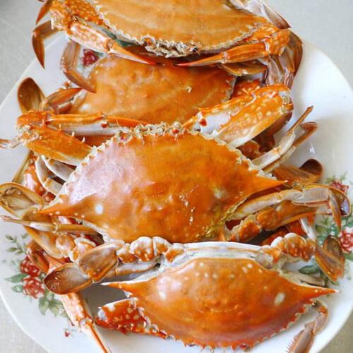 家常水煮梭子蟹