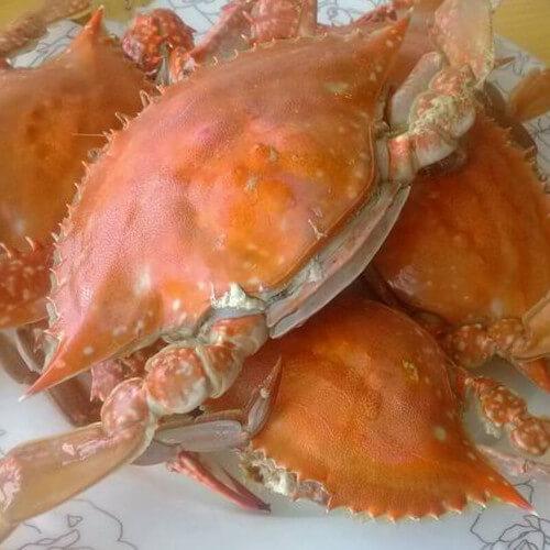 秘制水煮梭子蟹