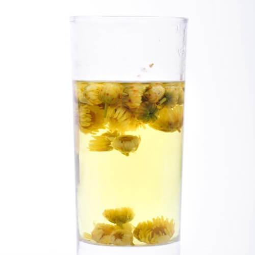 金银花胎菊茶