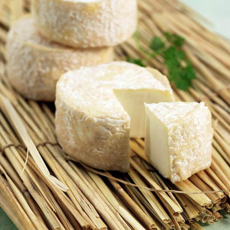 自制山羊奶酪