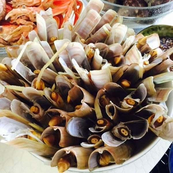 海蛏煮豆瓣酱