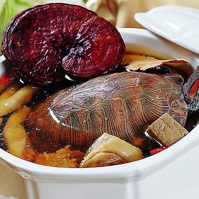 土茯苓草龟汤