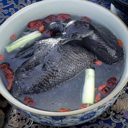 营养乌鸡汤