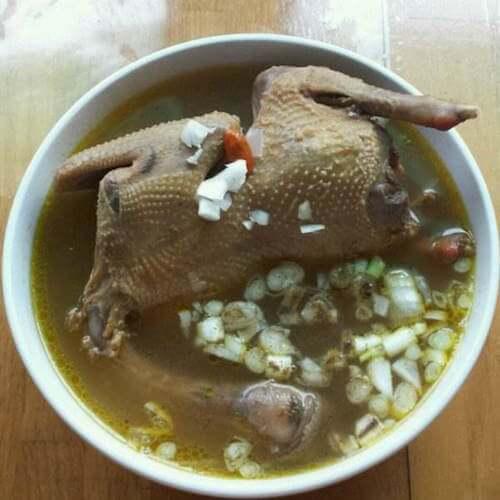 美味炖鸽子汤