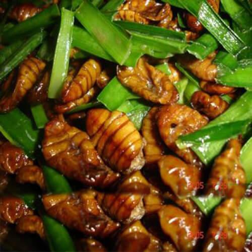 好吃的马蜂菜坨