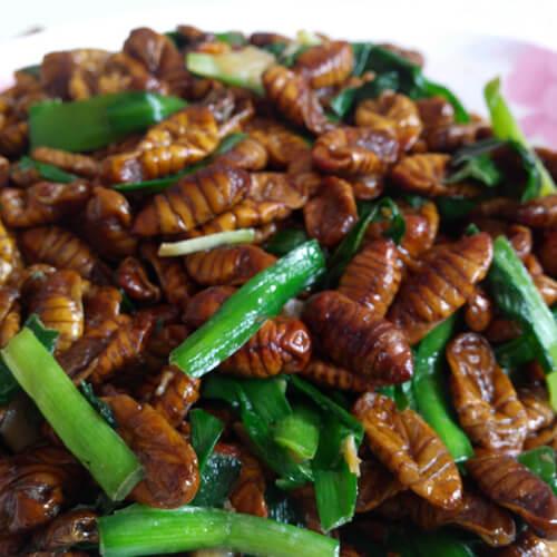 葱姜炒蚕蛹