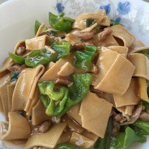 辣辣的土豆干豆腐炒尖椒