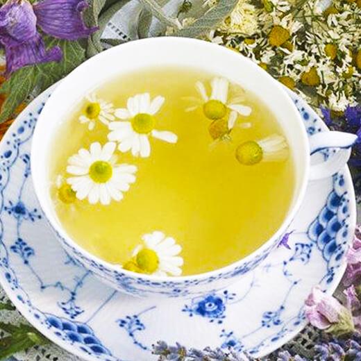 爱上桑菊茶