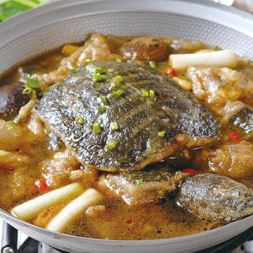 粉皮焖甲鱼