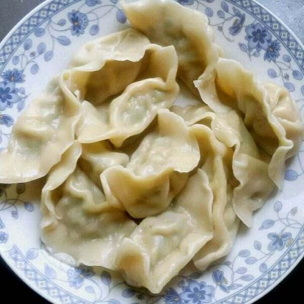 美味的鸡蛋茴香苗饺子